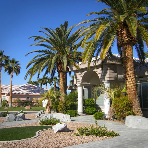 Facade of a house in Green Valley North with two Palm trees on the side