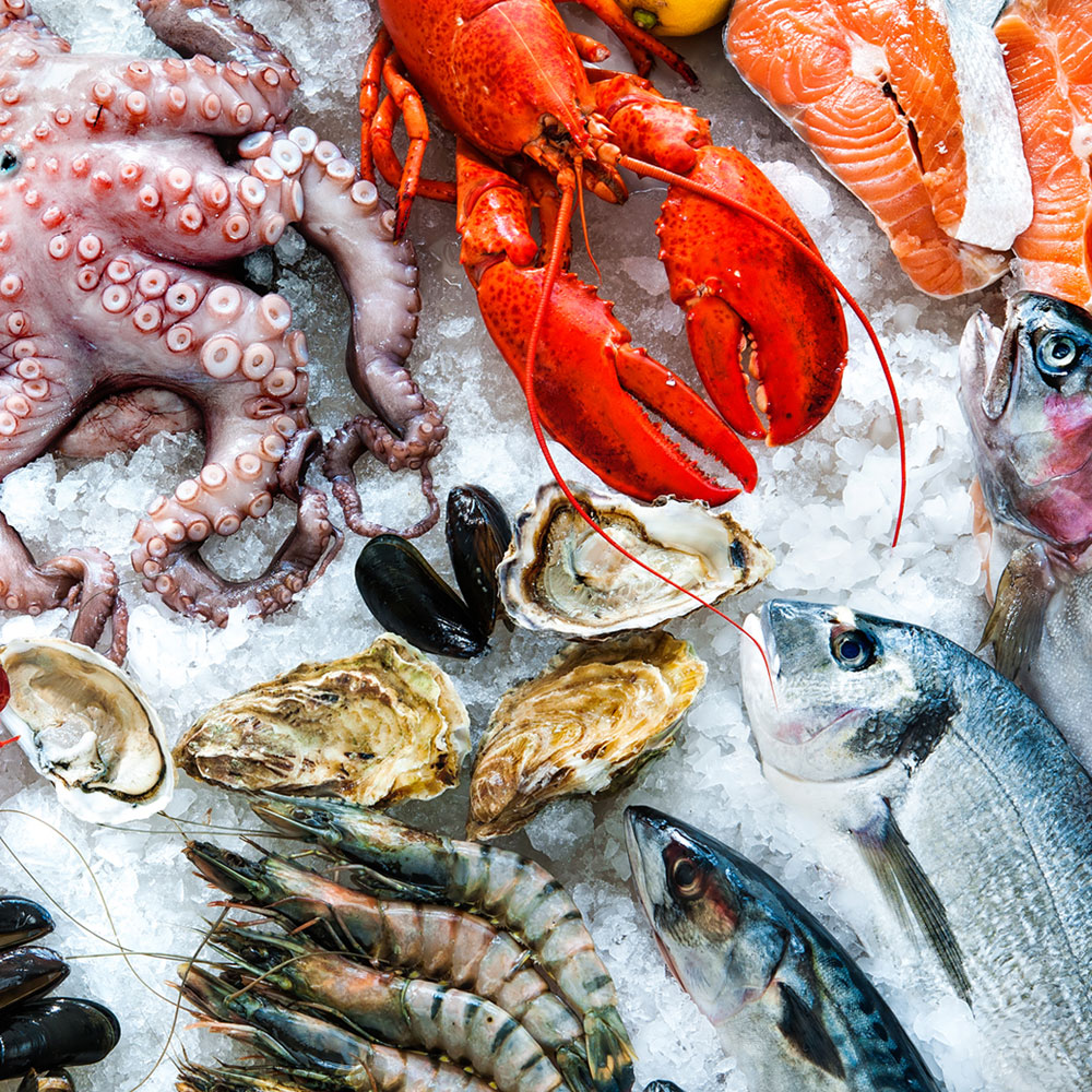 Fishes, squids, lobsters, shellfish and many more at a seafood buffet restaurant in Las Vegas.