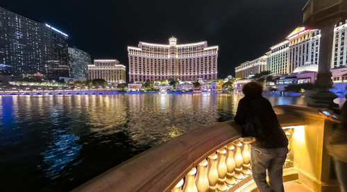 A tourists looking at the scenic view of Bellagio Hotel and Casino at night - one of the luxurious hotels in Las Vegas